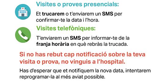 Enlace a Consulta de visitas y pruebas programadas