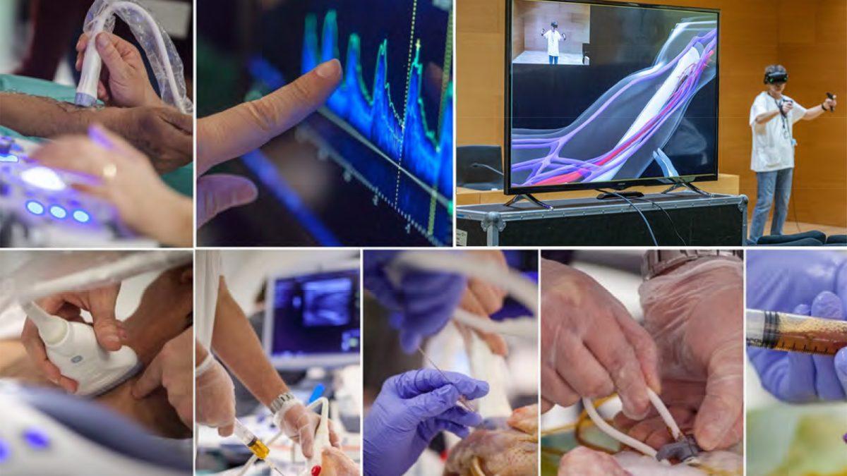 XVII Curs teoricopràctic d'ecografia per a l'accés vascular en hemodiàlisi