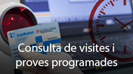 Consulta de visitas y pruebas programadas