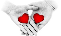I want to make an organ donation